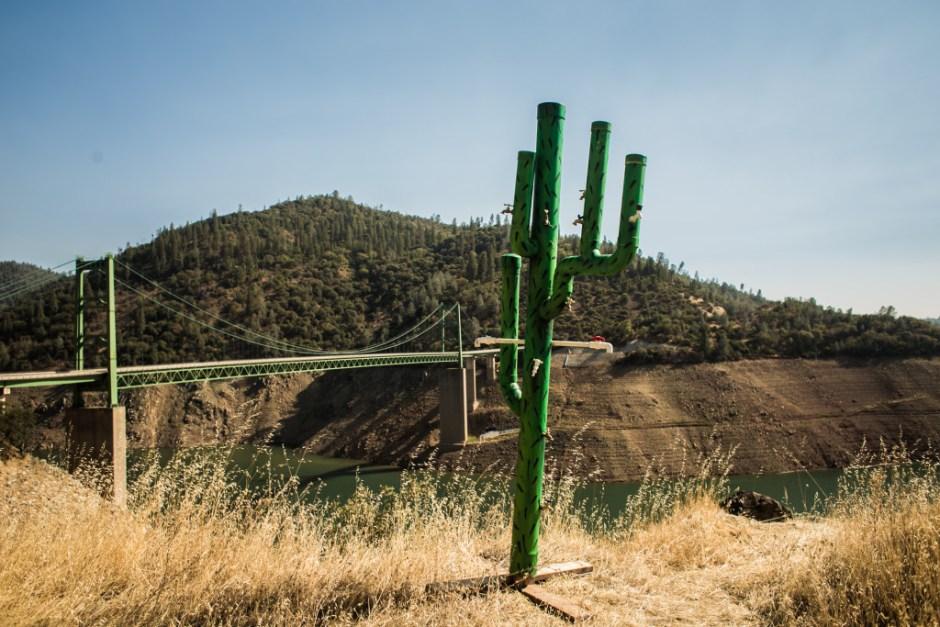 Mundano-faz-intervencao-seca-California_04
