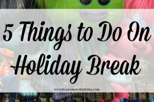 5 Things to Do on Holiday Break