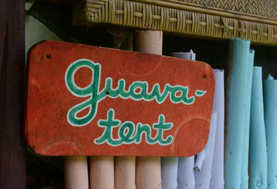22_Hedonisia-Hawaii_eco-hostel_guava-tent