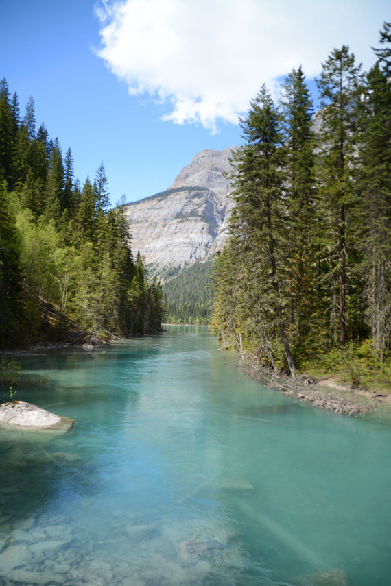 Canada_Bristish-Columbia_Mount-Robson-Park_Kinney-lake_08