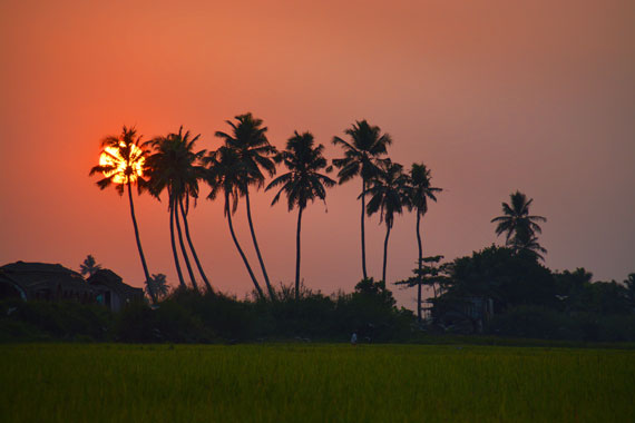 12-Sunset_Kerala-Blog-Express_Backwaters-Alappuzha_Houseboats-Lakes-and-Lagoons