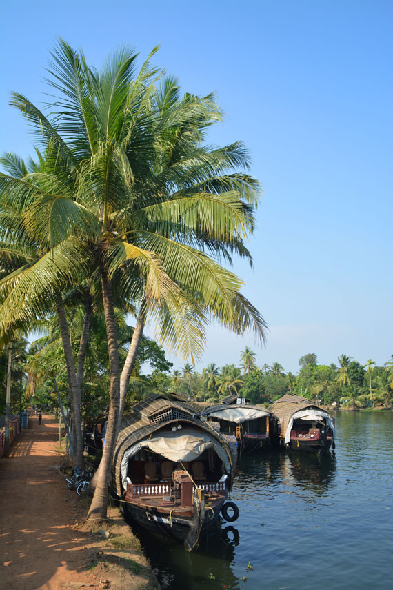 15_Kerala-Blog-Express_Backwaters-Alappuzha_Houseboats-Lakes-and-Lagoons