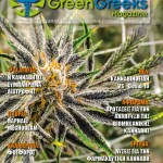 Cover issue 20