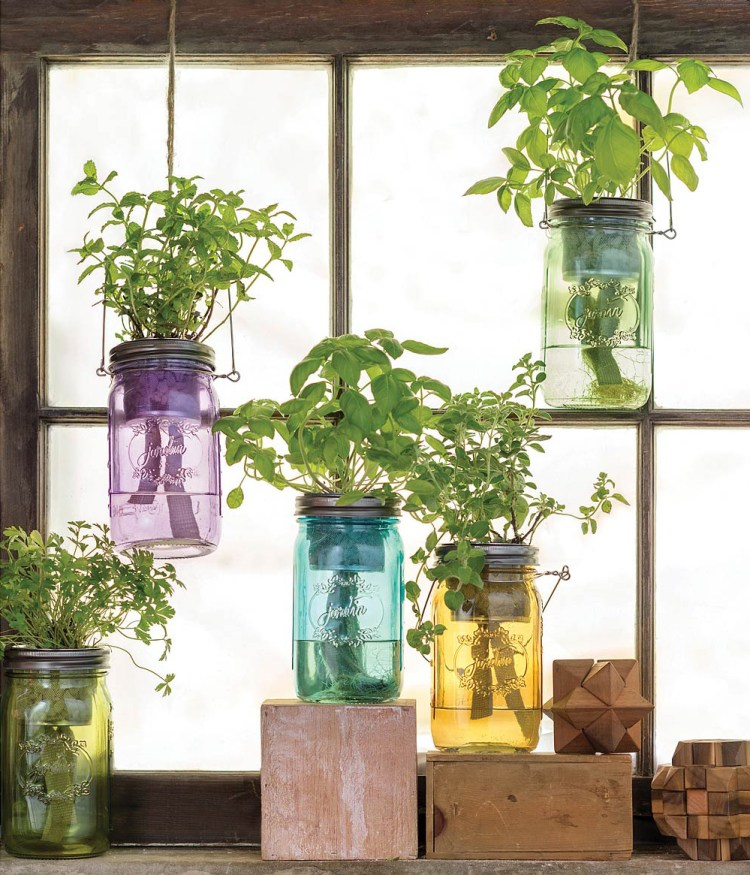 https://www.thegreenhead.com/2016/11/self-watering-mason-jar-indoor-herb-garden.php