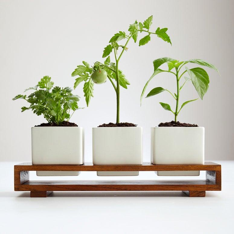 Garden Stacker Planter Indoor Outdoor Culinary Herb