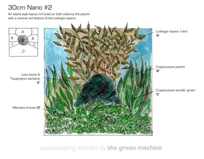 Image of 30cm Nano Island Aquarium Plant Layout Package