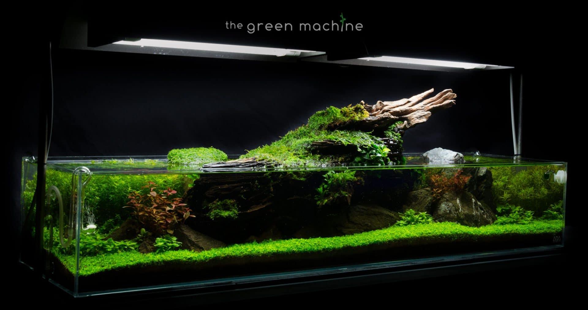 The Green Machine Aquascaping Shop Aquarium Plants Supplies Planted Tank Videos Tutorials Articles