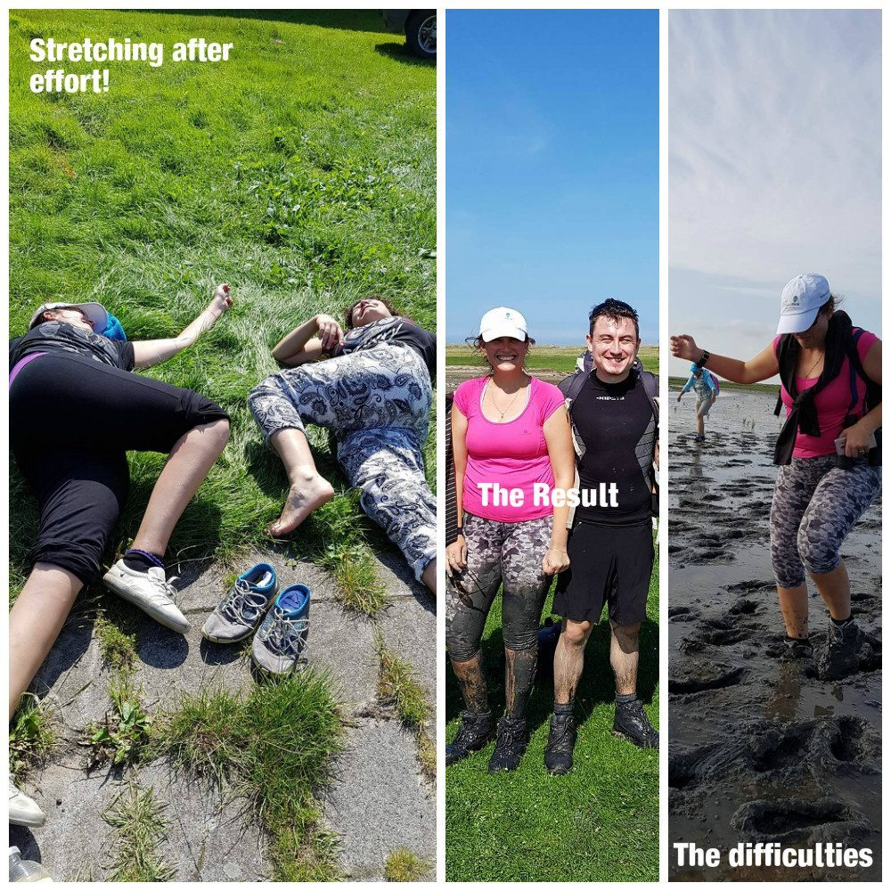 wadlopen mudflat hiking the netherlands what to do in the netherlands