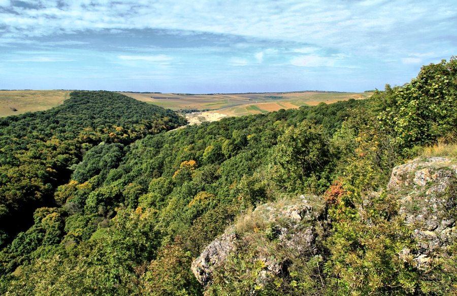 reserve naturelle fetesti Rezervația Fetești que faire en moldavie moldavie tourisme activités chisinau