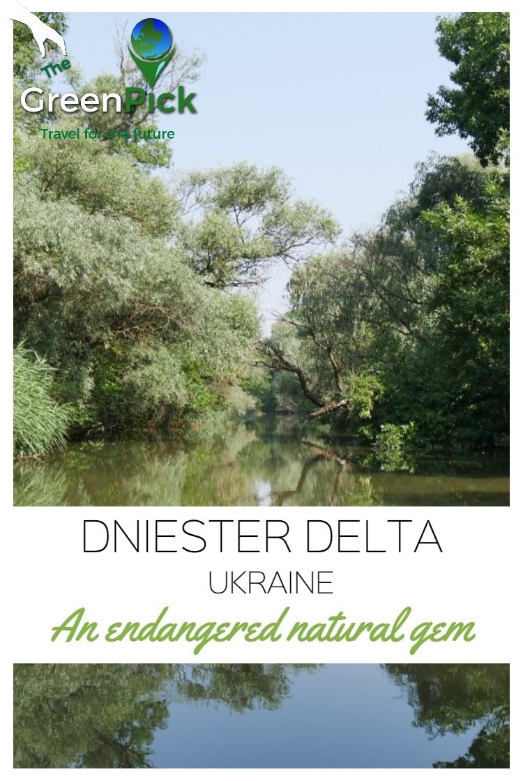 dniestr delta ukraine natural reserve bird watching odessa