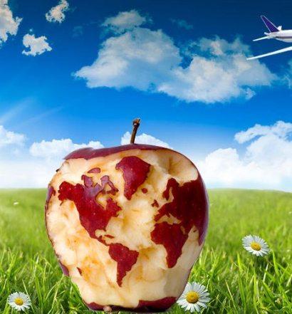 greenpick vegan vegetarian vegan travel