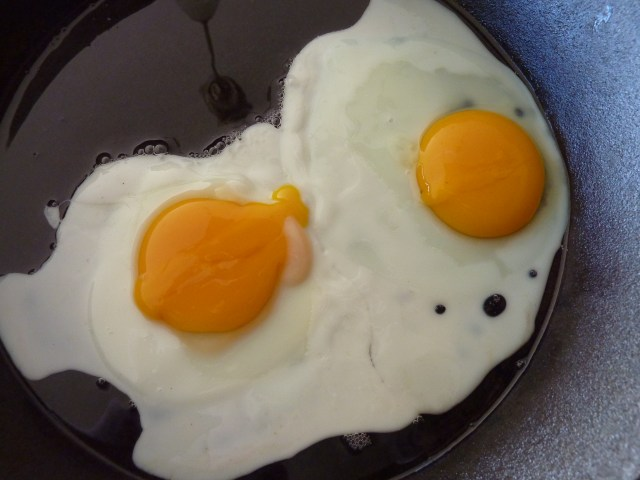 Farm Eggs Yolk