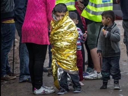 refugee dispatch