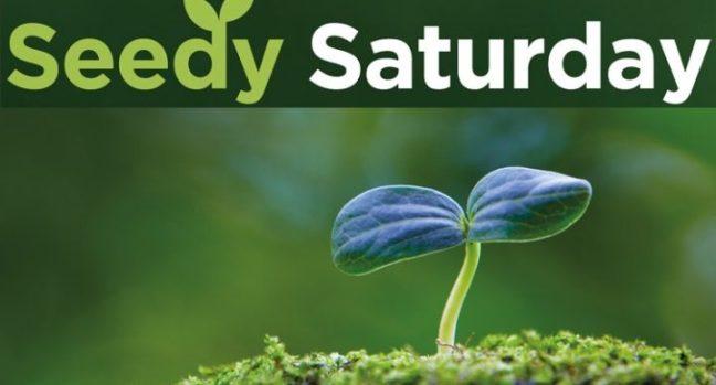 Seedy-Saturday
