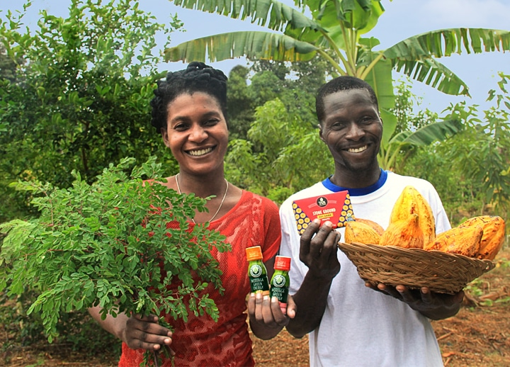 The Growing Dutchman - KuliKuli Moringa Energy Shots Available in WholeFoods - Haitian Smallholder Farmers Press Release SFA