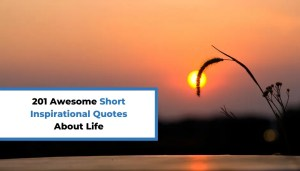 201 Awesome Short Inspirational Quotes About Life