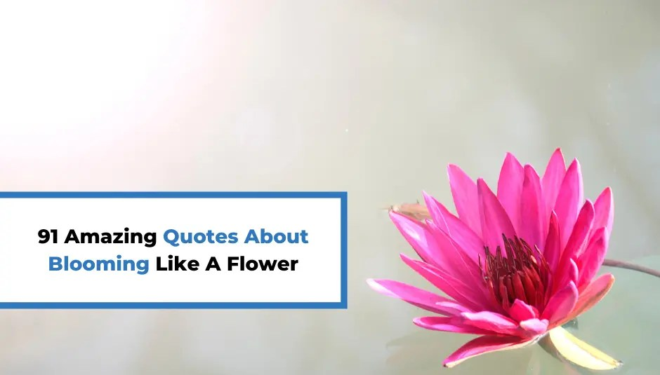 91 Amazing Quotes About Blooming Like A Flower