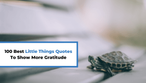 100 Best Little Things Quotes To Show More Gratitude