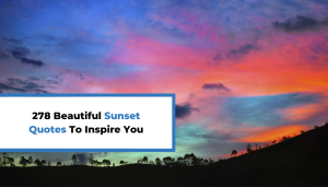 278 Beautiful Sunset Quotes To Inspire You
