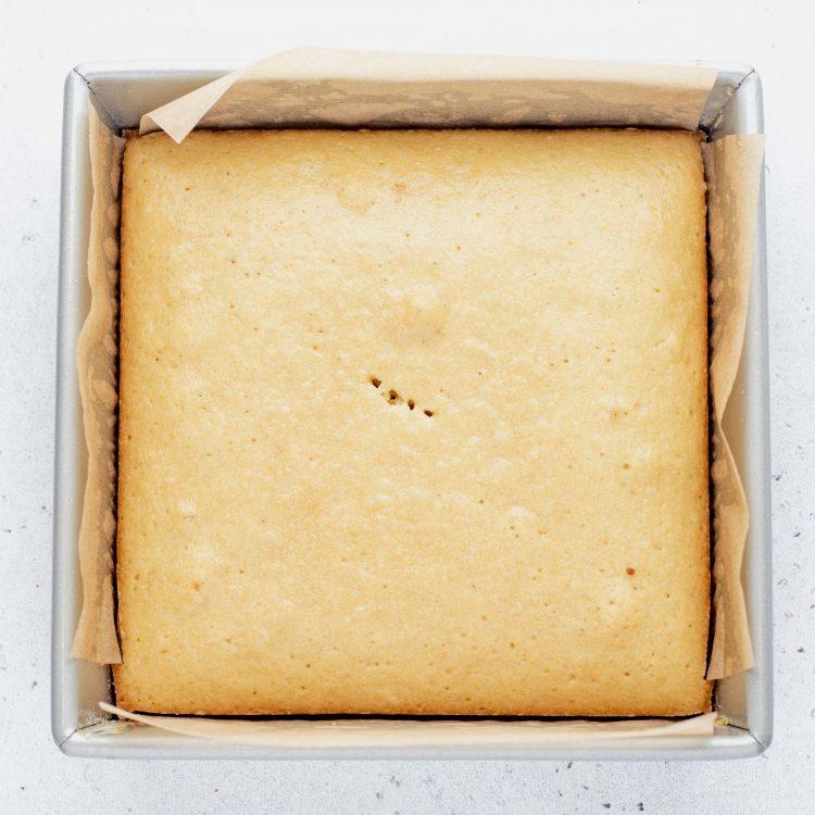 vegan vanilla sponge cake for lamingtons recipe