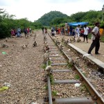 So many monkeys at Goram Ghat Railway Station