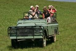 safaribinoculllllllll