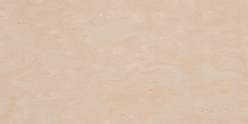 Maple grain closeup, used as a guitar tonewood