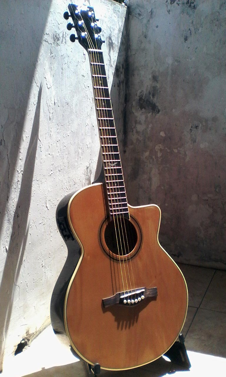 Eko Guitars N(e)XT series Electro-acoustic steel strings