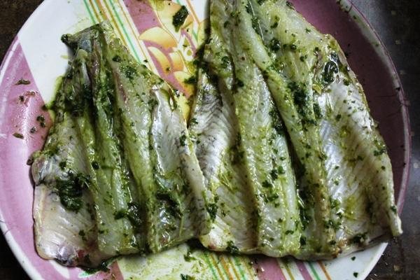 herb marinated fish