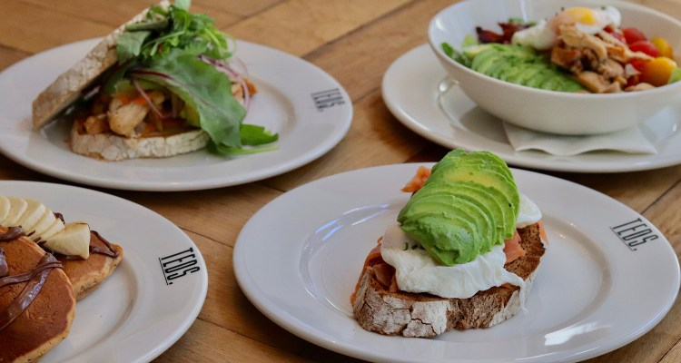 Teds Den Haag | All day brunch hotspot
