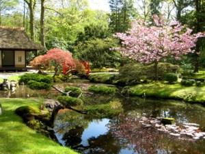 Japanese Garden in Clingendael Park @ Clingendael Park