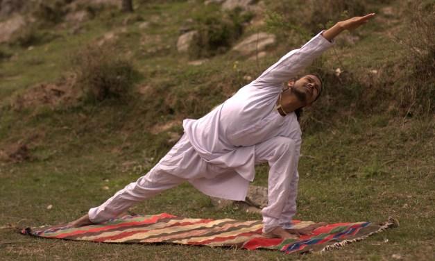Yoga and Ayurveda Healthcare Seminar Brings New Perspectives