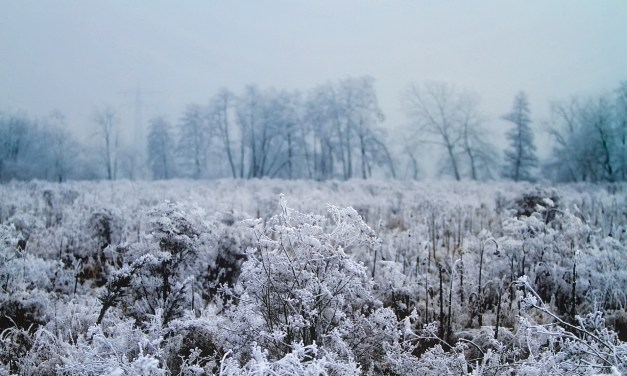 Winter's coming: Colder weather to set in next weekend