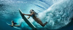 National Geographic photo exhibition SPECTACLE in the Museon @ Museon