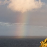 Rapness Mill, a Puffin, a rainbow and the sunset