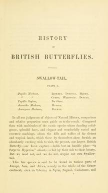 Swallowtail butterfly - The History of British Butterflies - Rev FO Morris