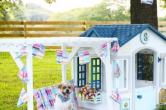 dog_house_little_tikes_inspiration