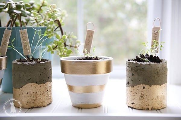 diy_herb_garden_windowsill