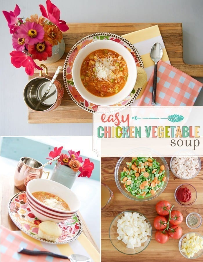 easy_chicken_vegetable_soup
