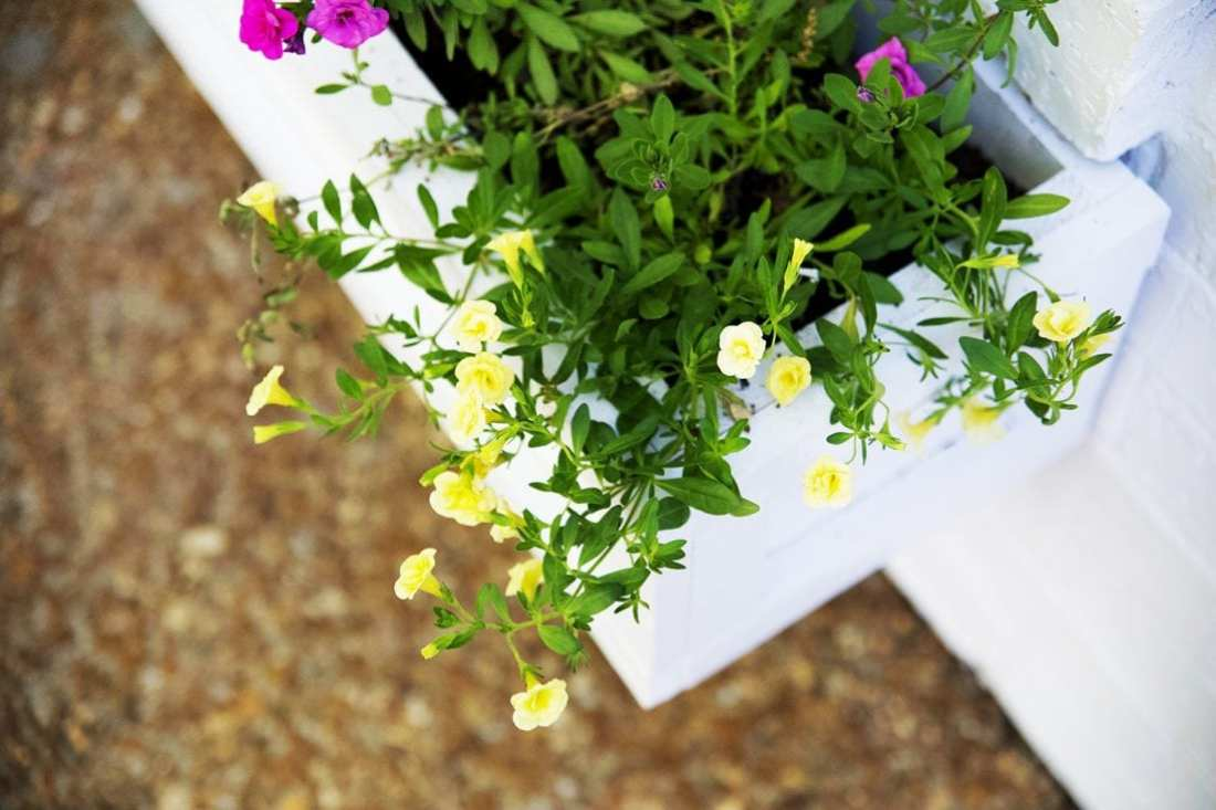how to build a simple window box