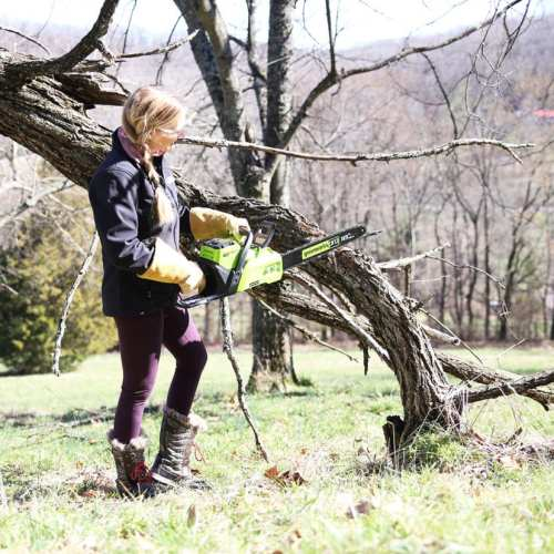 greenworks – a giveaway! {and also the time I tried a chainsaw}