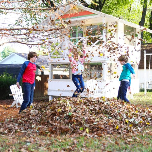 fall fun with the greenworks blower