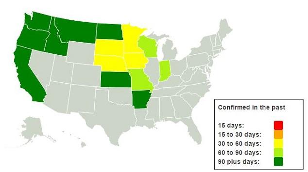 Bird Flu Affect Outbreak
