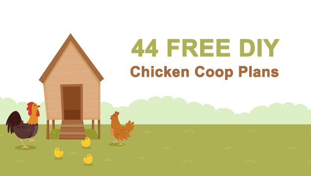 44 Beautiful DIY Chicken Coop Plans You Can Actually Build Banner
