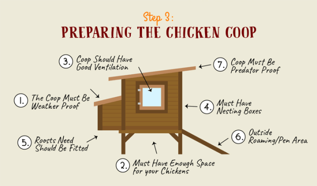 What Makes the Perfect Coop