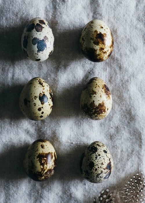 quail egg types