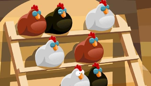 chicken roost