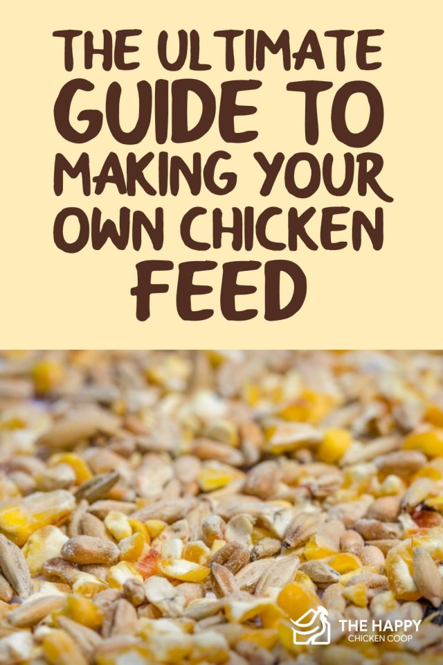 Making Your Own Chicken Feed