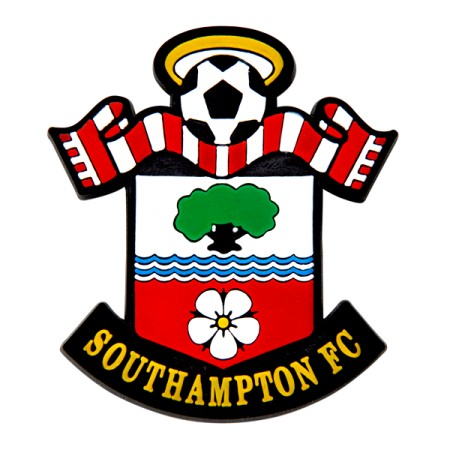 Image result for Southampton FC