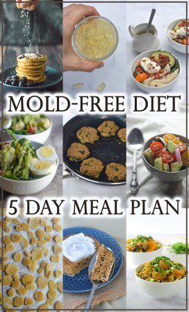 Have a mold allergy or suspect you have one? This 5 day mold-free diet meal plan will get you started on your way to regaining your health!